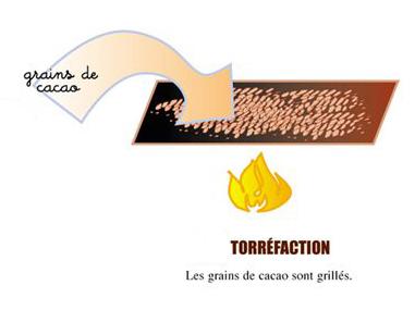 torrefaction