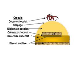 Bûche bavaroise cacao/passion.